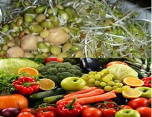 Διατροφή για πλήρη υγεία και ευεξία, με φύτρα και ακατέργαστα φρούτα, λαχανικά και ξηρούς καρπούς. Διαδικασία παραγωγής φύτρων 1
