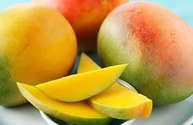 Διατροφή για πλήρη υγεία και ευεξία, με φύτρα και ακατέργαστα φρούτα, λαχανικά και ξηρούς καρπούς. Διαδικασία παραγωγής φύτρων 15