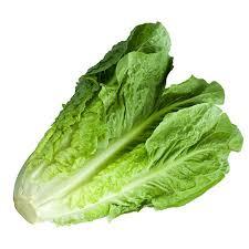 Διατροφή για πλήρη υγεία και ευεξία, με φύτρα και ακατέργαστα φρούτα, λαχανικά και ξηρούς καρπούς. Διαδικασία παραγωγής φύτρων 20