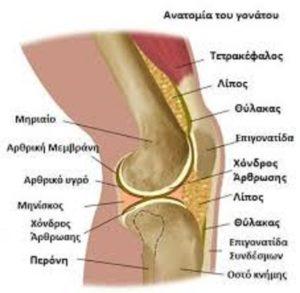 Αυτοθεραπεία από πρόβλημα στα ισχία, τα γόνατα και τη μέση ξεμπλοκάροντας τους αντίστοιχους μεσημβρινούς. 4