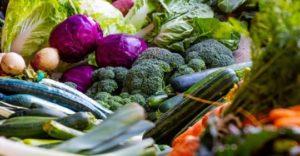 Τρόφες και ενεργειακοί τρόποι που αποτοξινώνουν το ύπαρ και μας απαλλάσσουν από χολιστερίνη, λιπώδη διήθηση,κύστες, αιμαγγειώματα, ασβεστώματα. 14