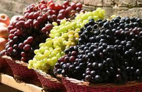 Διατροφή για υγεία και μακροζωΐα 2