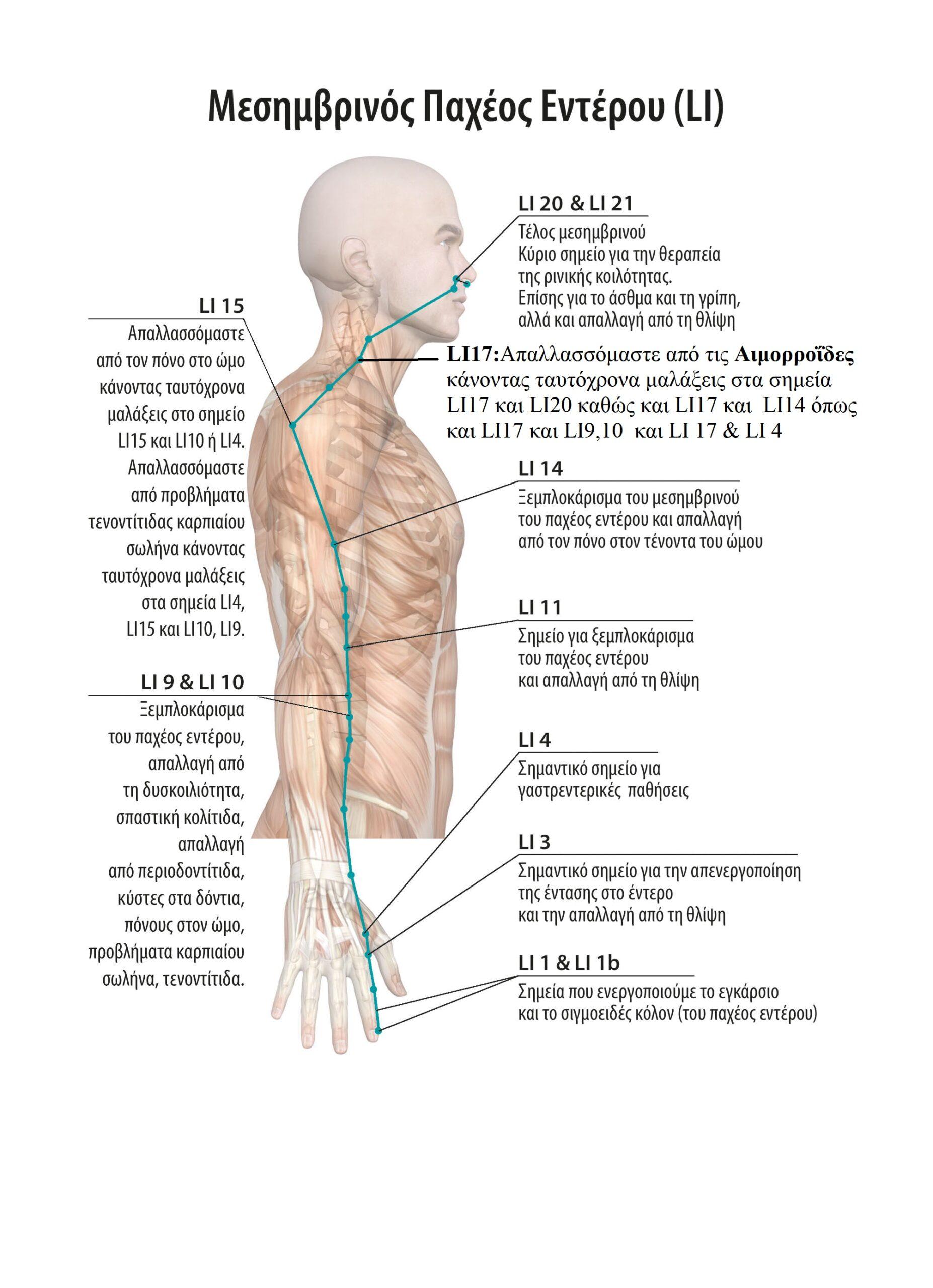Αυτοθεραπεία από αιμορροΐδες ξεμπλοκάροντας τον μεσημβρινό του παχέος εντέρου 3