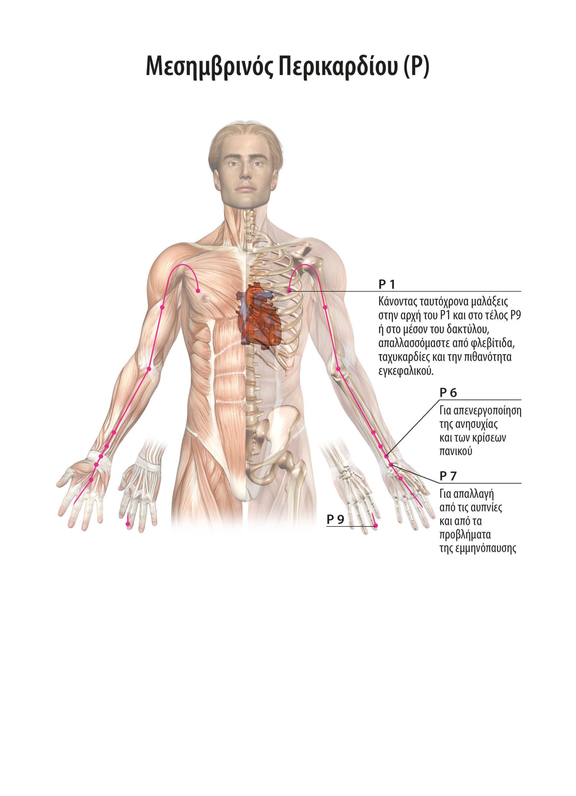 Μπορούμε να απαλλασσόμαστε από φλεβίτιδες, κυρσούς, ταχυκαρδίες, προβλήματα του κυκλοφοριακού,  περικαρδίου, να προλάβουμε εγκεφαλικά. 6