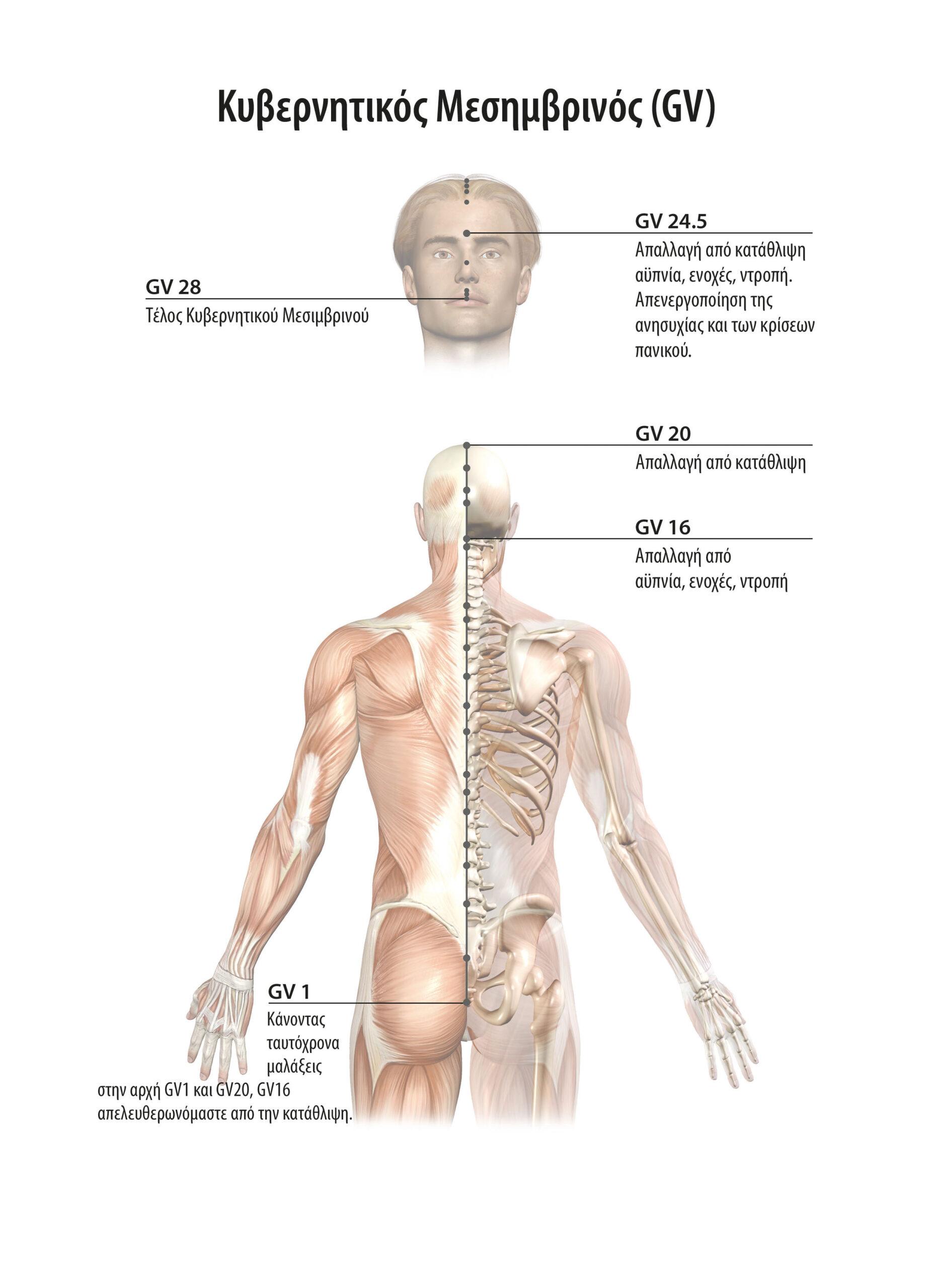 Αυτοθεραπεία από κήλες μεσοσπονδυλίου δίσκου, ακράτεια, κατάθλιψη και εμβοές στα αυτία ξεμπλοκάροντας τον μεσημβρινό της ουροδόχου κύστης, χολής, κυβερνητικό μεσημβρινό. 6