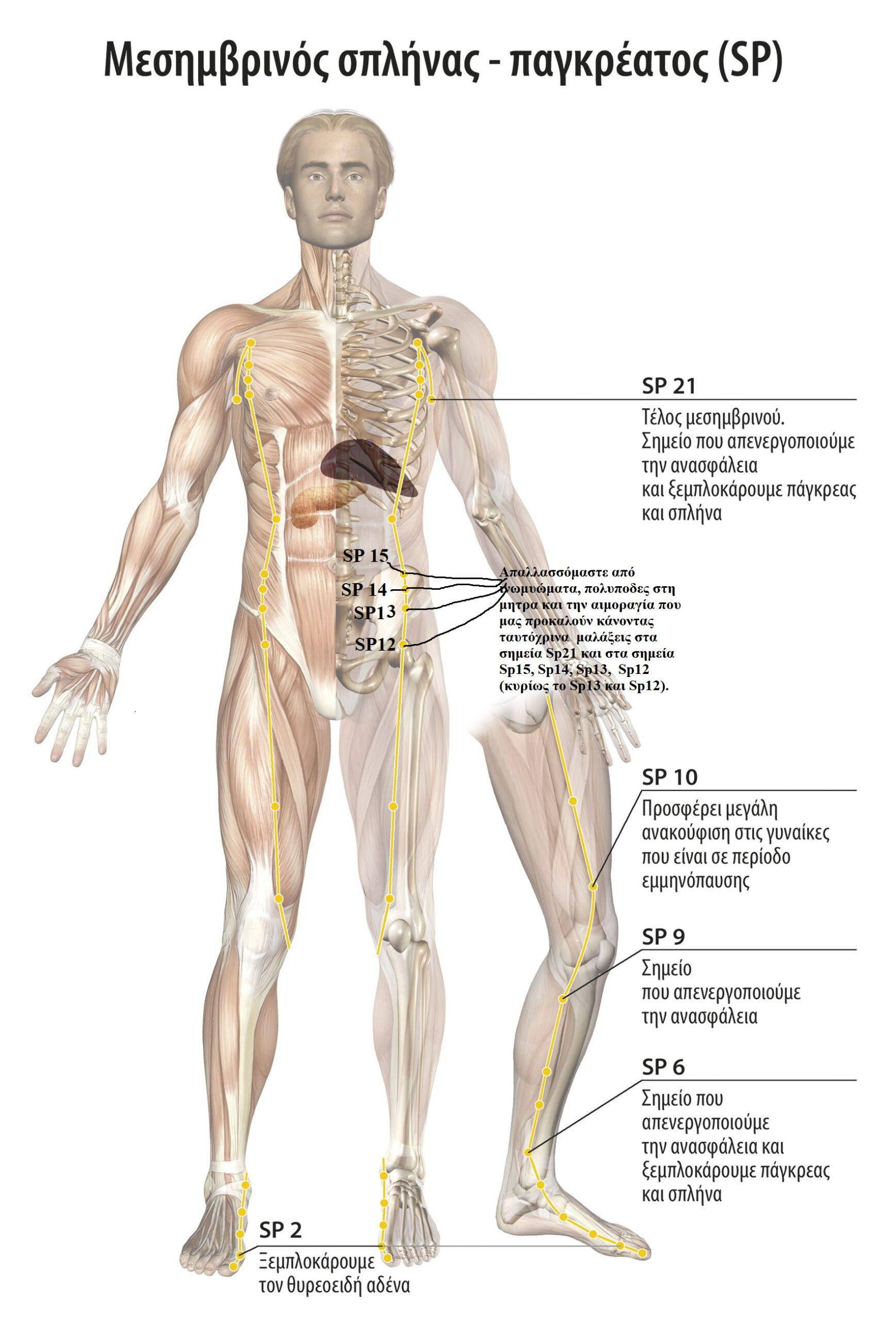 Αυτοθεραπεία από ινομυώματα και την αιμοραγία που προκαλούν, καθώς μετουσίωση συναισθηματικού βάρους σε χαρά ξεμπλοκάροντας τον μεσημβρινό  της σκπλήνας πάγκρεας και λεπτού εντέρου 2