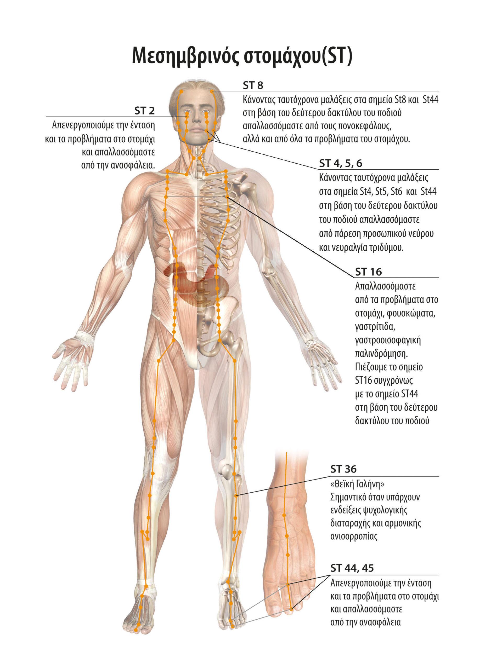 Αυτοθεραπεία από χρόνια σοβαρότατη γαστροοισοφαγική παλινδρόμηση, εγκαύματα 1ου βαθμου στον οισοφάγο ξεμπλοκαροντας τον μεσημβρινό του στομάχου και ενεργοποιώντας ρεφλεξολογικά την βαλβίδα πάνω από το στομάχι. 2