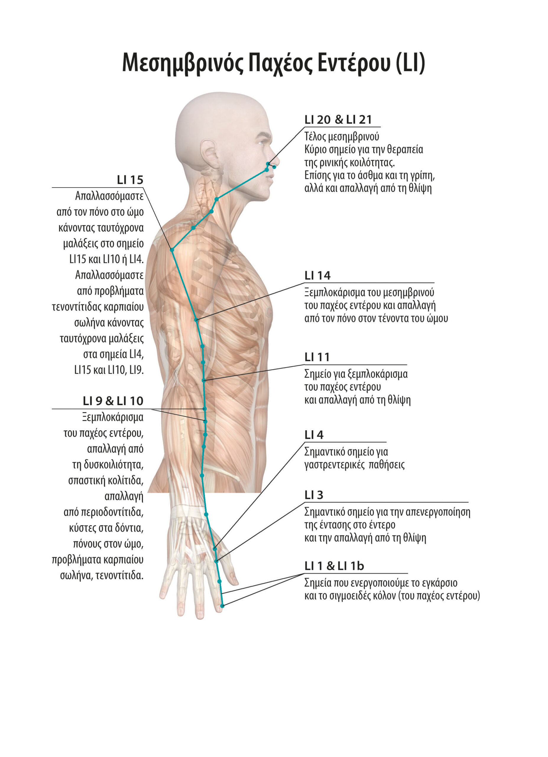 Αυτοθεραπεία από δυσκοιλιότητα, από άκανθα, προβλήματα στον αυχένα, τη μέση και τα γόνατα ξεμπλοκάρoντας τους αντίστοιχους ενεργειακούς μεσημβρινούς. 2