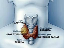 Αυτοθεραπεία από πρόβλημα  στα γόνατα, στα ισχία, στο στομάχι, αλλεργίες, στο θυρεοειδή, στη μεση, στη χολή,  άσθμα,  στον αυχένα, στους ώμους. 5