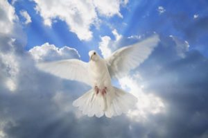 Το Άγιο Πνεύμα μας φωτίζει να γνωρίσουμε τον Θεό και να ενωθούμε μαζί Του. 1