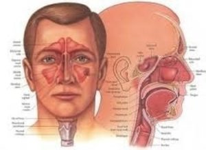 Αυτοθεραπεία από ιγμορίτιδα, τενοντίτιδα, σύνδρομο καρπιαίου σωλήνα, πόνους στα χέριακαι στα δάκτυλα. 2