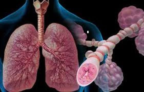 Αυτοθεραπεία από Χρόνια Αποφρακτική Πνευμονοπάθεια (ΧΑΠ), βρογχίτιδα, εμφύσημα ξεμπλοκάροντας τον μεσημβρινό +του πνευμόνα. 1